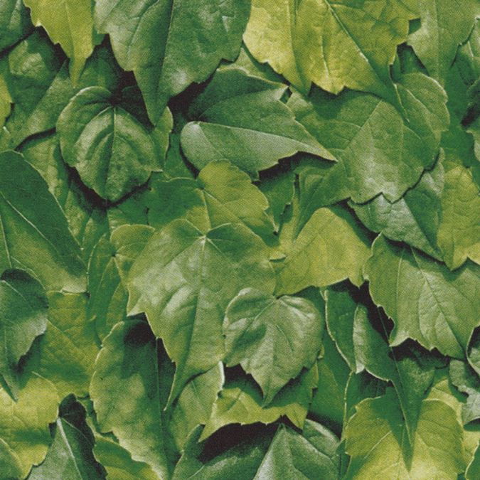45cm wide Leaf Print Sticky Vinyl (280-3170) Available in lengths from 1 to 15m